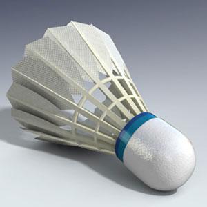 Sports Equipment Game Option - badminton shuttlecock