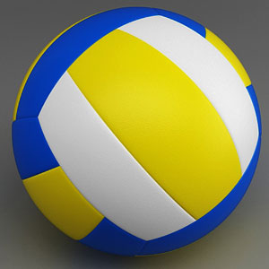 Sports Equipment Game Option - volleyball ball